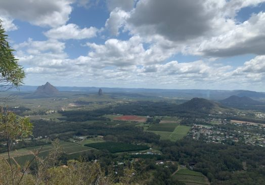 Hike- Mt Tibrogargan